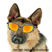 Show your Pets with Oakleys!